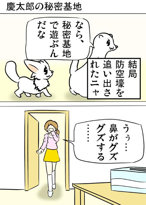 別の遊びをしにいくマンチカン猫とフェレット 四コマ漫画