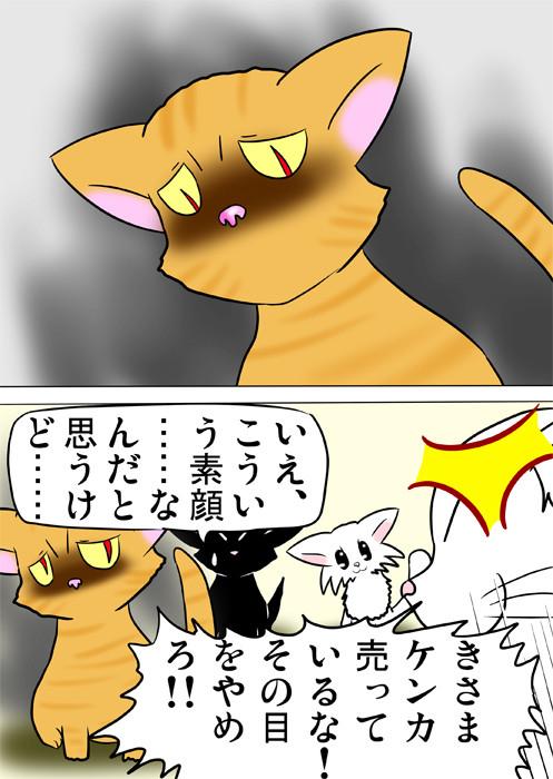 メインクーン猫を軽蔑したようににらむ猫 ほのぼの・ふわもふ猫の日常四コマweb漫画361話2p