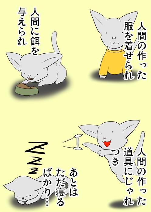 猫に対する批判 ふわもふケモノ家族連載web漫画四十二話11p