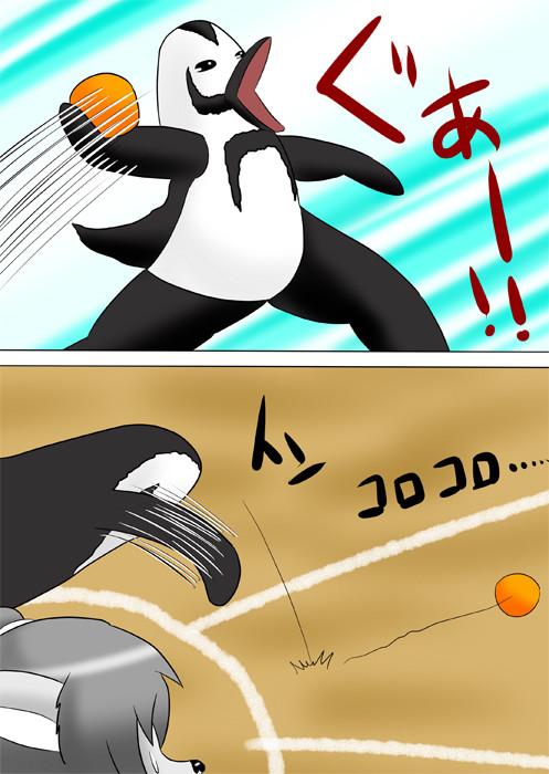 ハンドボールを地面にころがすペンギン