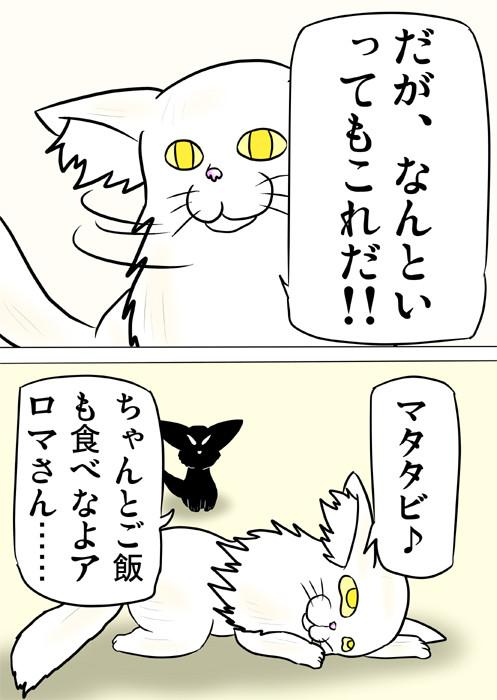 マタタビに酔いしれるメインクーンにあきれる黒猫 猫四コマ漫画165話2p