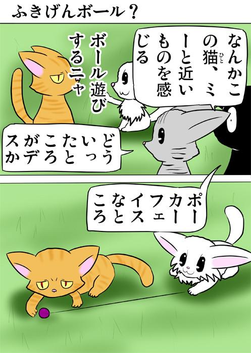 目つきの悪い猫とボール遊びをする白猫 ほのぼの・ふわもふ猫の日常四コマweb漫画360話1p