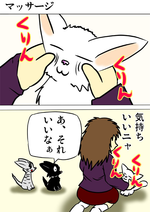 飼い主に顔をマッサージされるマンチカン猫 ねこ四コマ漫画