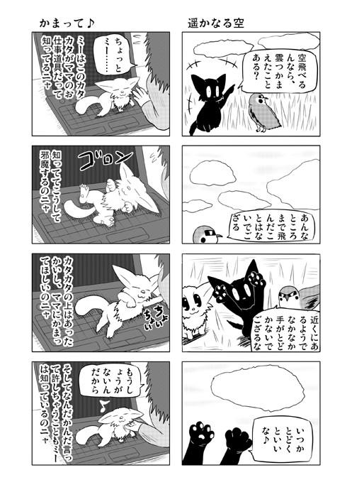 ねこの日常を描いた四コマ漫画ミーのおもちゃ箱53p