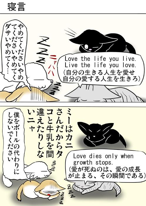 寝言を言う子猫達を見る黒猫 ふわもふ猫の日常四コマweb漫画310話1p