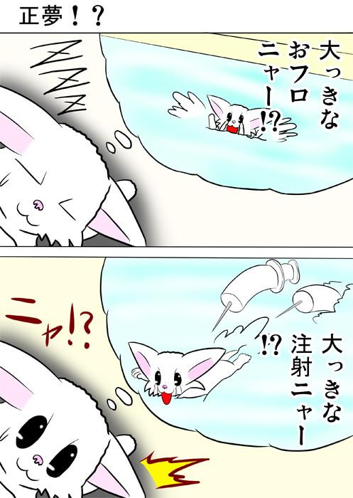 風呂におぼれ、巨大注射に襲われる夢をみるマンチカン猫 ふわもふ猫の日常四コマweb漫画304話1p