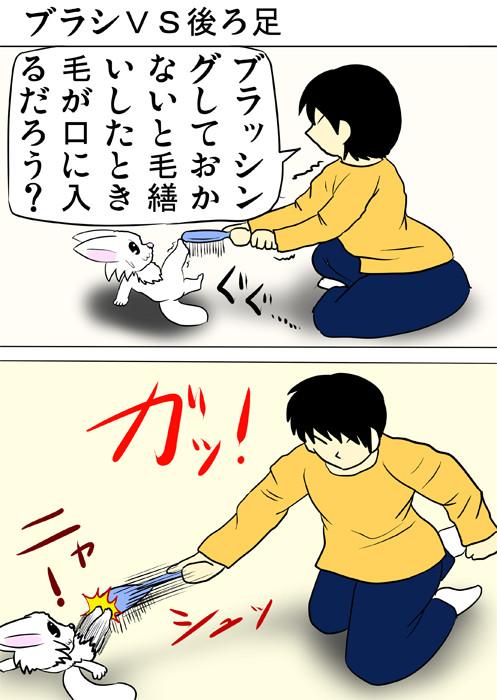 ブラシを後ろ足で止めるマンチカン猫 ふわもふ猫の日常四コマweb漫画309話1p