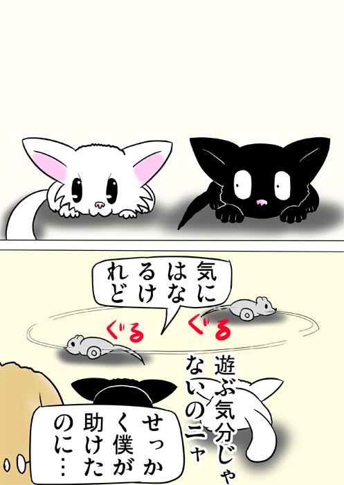 ネズミのおもちゃをじっと見たまま動かない子猫達 ふわもふ猫の日常四コマweb漫画281話2p