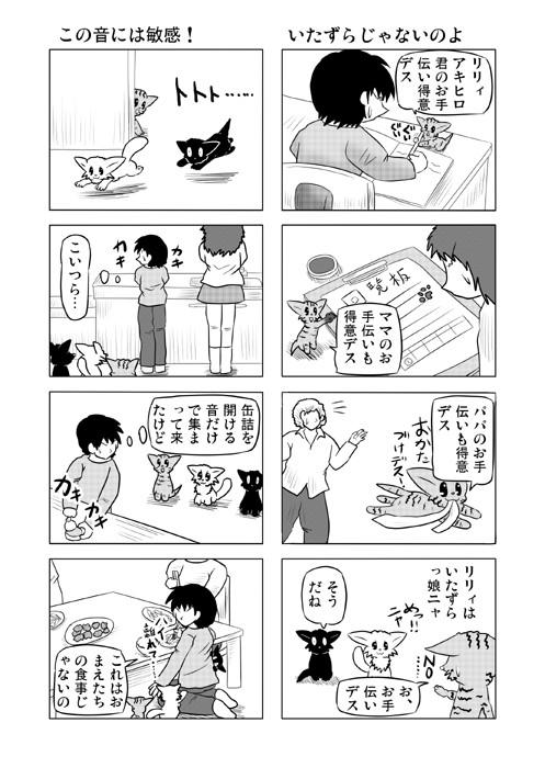 ねこねこ四コマweb漫画ミーのおもちゃ箱61p