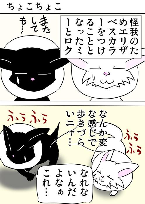 エリザベスカラーをつけている子猫達 ふわもふ猫の日常四コマweb漫画336話1p