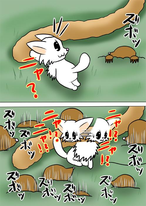 あちこちの地面からモグラが現れ、慌てるマンチカン猫 ふわもふ猫の日常四コマweb漫画210話2p
