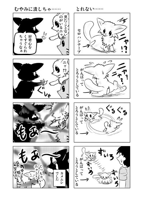 ねこねこ四コマweb漫画ミーのおもちゃ箱23p