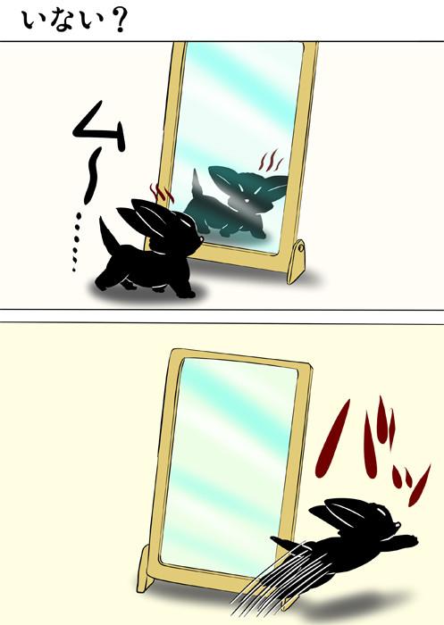 鏡に映った自分を睨む黒猫