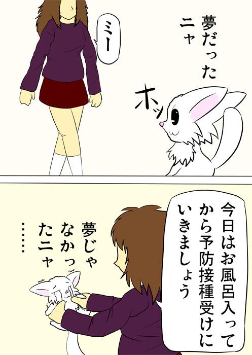 飼い主に捕まるマンチカン猫 ふわもふ猫の日常四コマweb漫画304話2p