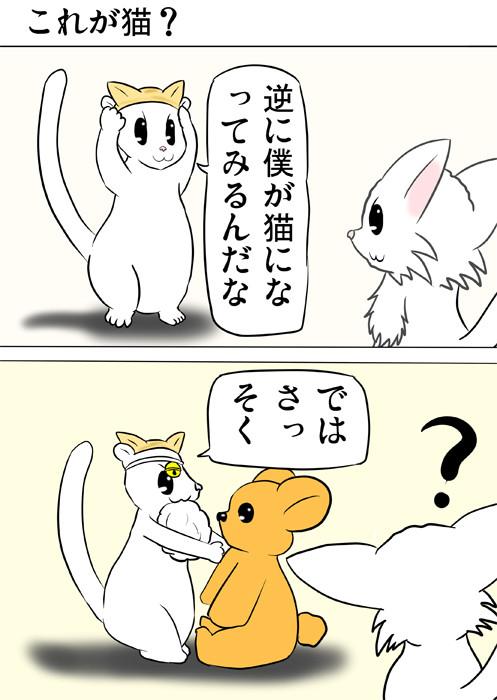 猫耳つけて頭に鈴、口に毛玉をくわえ、クマの人形を置くフェレット ほのぼの・ふわもふ猫の日常四コマweb漫画368話1p