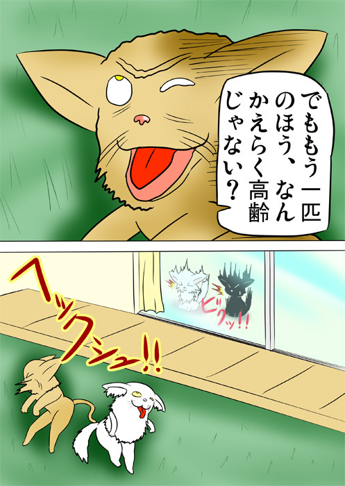 くしゃみする老猫 ふわもふ猫の日常四コマweb漫画268話2p