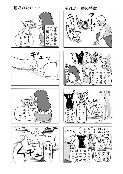 ねこねこ四コマweb漫画ミーのおもちゃ箱63p