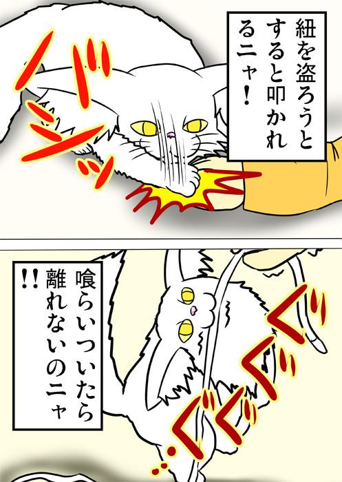 くらいついて紐を離さないメインクーン猫 ふわもふ猫の日常四コマweb漫画208話2p