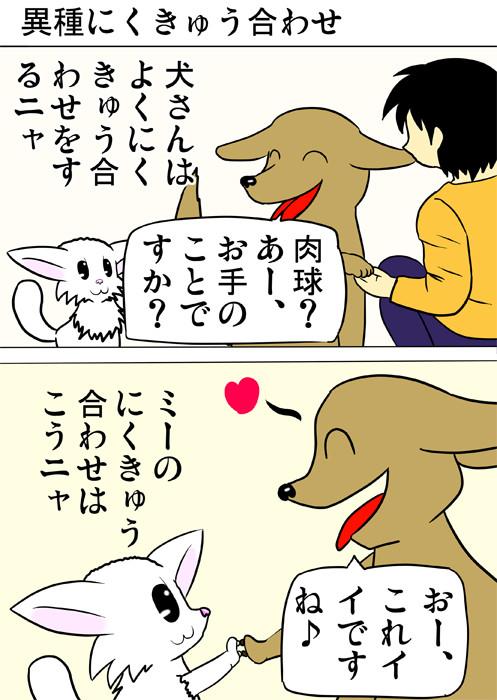 犬と肉球を合わせるマンチカン猫 ふわもふ猫の日常四コマweb漫画255話1p