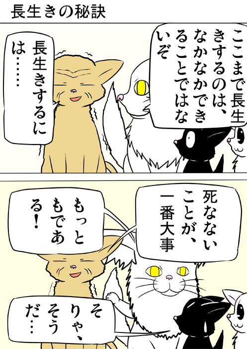 アドバイスする老猫 ふわもふ猫の日常四コマweb漫画270話1p