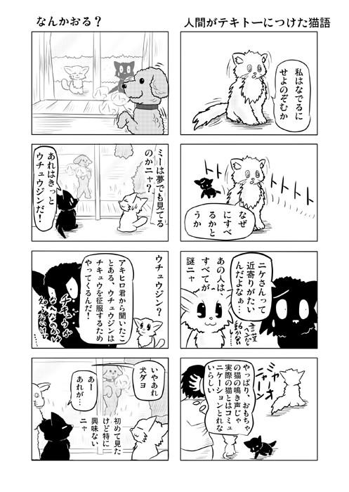 ねこねこ四コマweb漫画ミーのおもちゃ箱12p