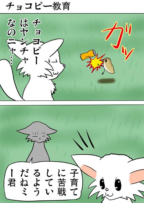 空き缶を蹴るうずらのヒナ ふわもふ猫の日常四コマweb漫画237話1p