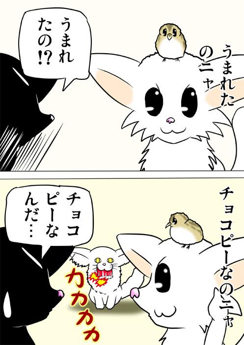 うずらのヒナを頭にのっけるマンチカン猫 ふわもふ猫の日常四コマweb漫画216話2p