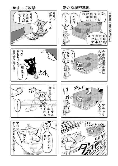 ねこの日常を描いた四コマ漫画ミーのおもちゃ箱57p