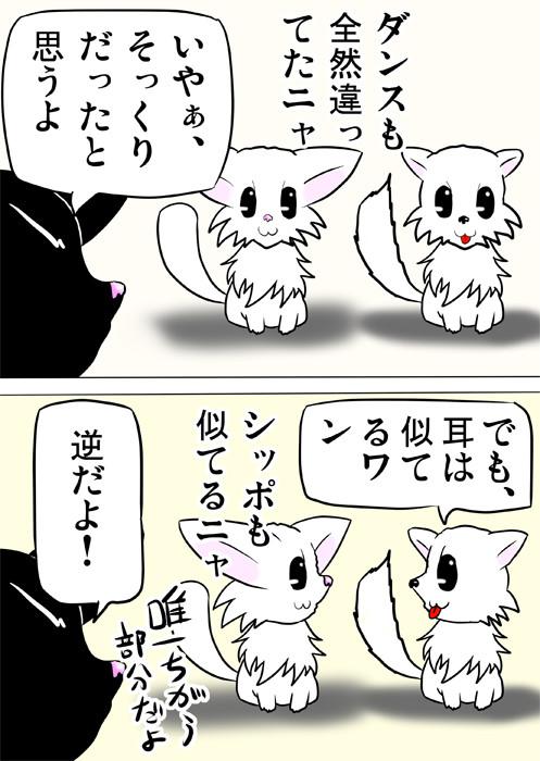 勘違いしているマンチカン猫とポメラニアン犬 ふわもふ猫の日常四コマweb漫画265話2p
