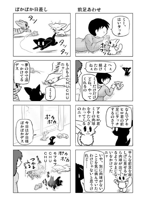 ねこねこ四コマweb漫画ミーのおもちゃ箱70p