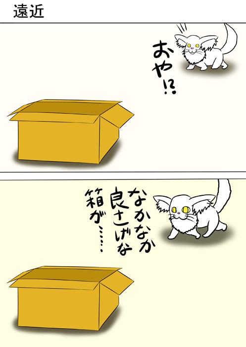ダンボール箱に近づいていくメインクーン猫 ふわもふ猫の日常四コマweb漫画232話1p