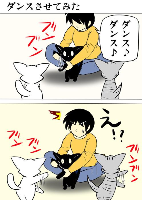 黒猫にダンスさせる少年 ふわもふ猫の日常四コマweb漫画334話1p