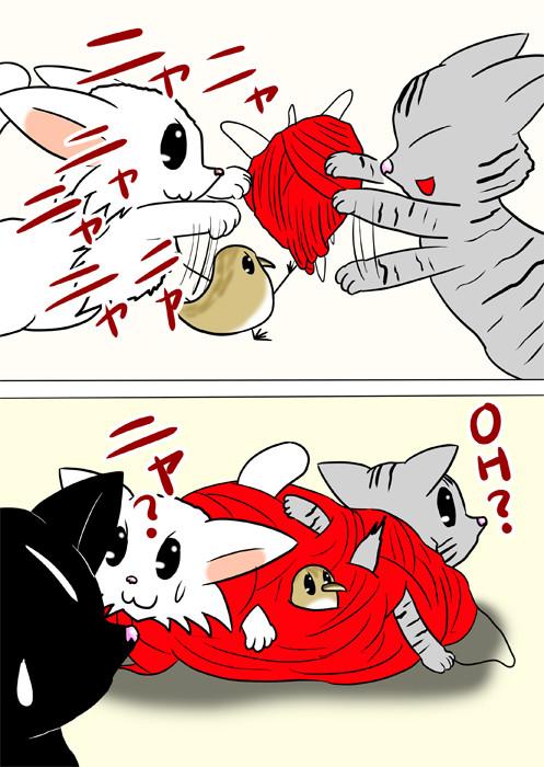 毛糸玉にじゃれて絡まってしまう猫とうずらのヒナ ふわもふ猫の日常四コマweb漫画240話2p