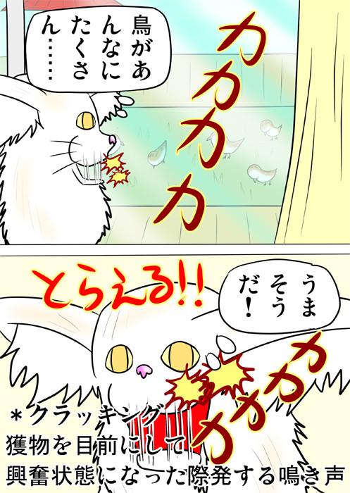 庭の小鳥をねらうメインクーン猫 ふわもふ猫の日常四コマweb漫画214話2p