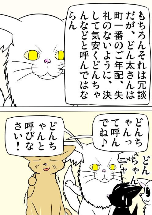 注意するメインクーン猫 ふわもふ猫の日常四コマweb漫画269話2p