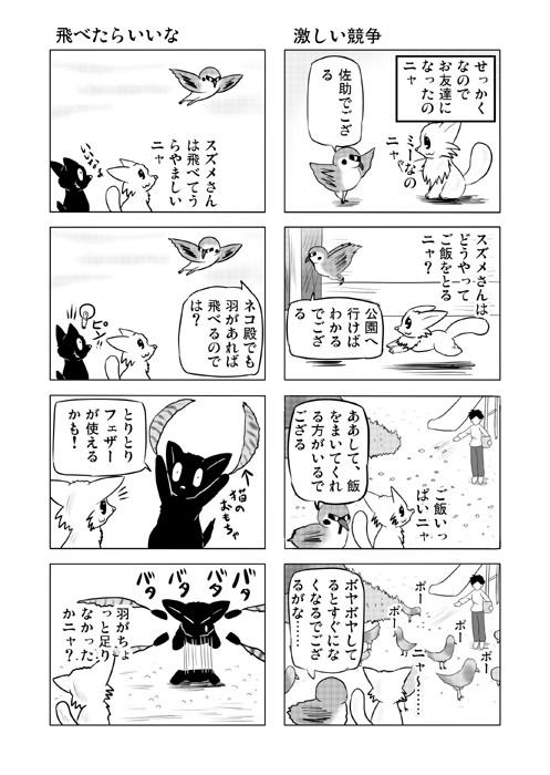 ねこの日常を描いた四コマ漫画ミーのおもちゃ箱52p