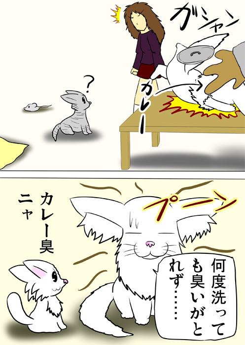 カレー鍋につっこむメインクーン猫 ふわもふ猫の日常四コマweb漫画312話2p