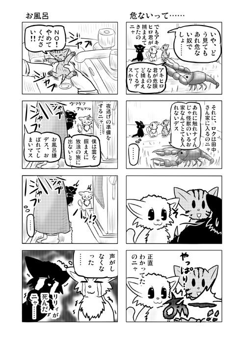 ねこねこ四コマweb漫画ミーのおもちゃ箱11p