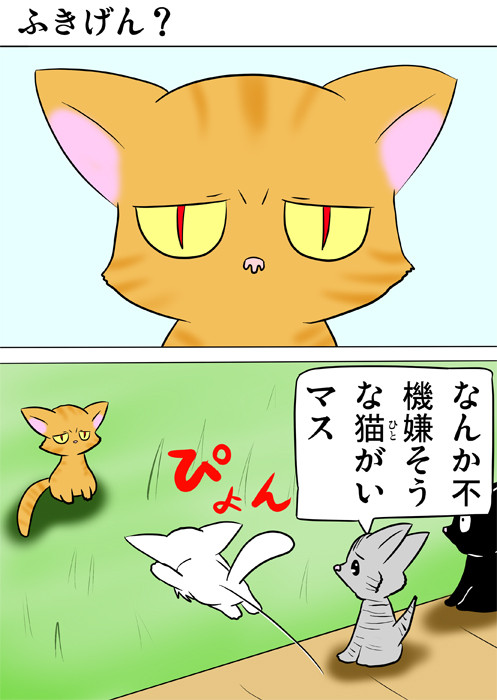 目つきの悪い猫のほうへ跳ぶ白猫 ほのぼの・ふわもふ猫の日常四コマweb漫画359話1p
