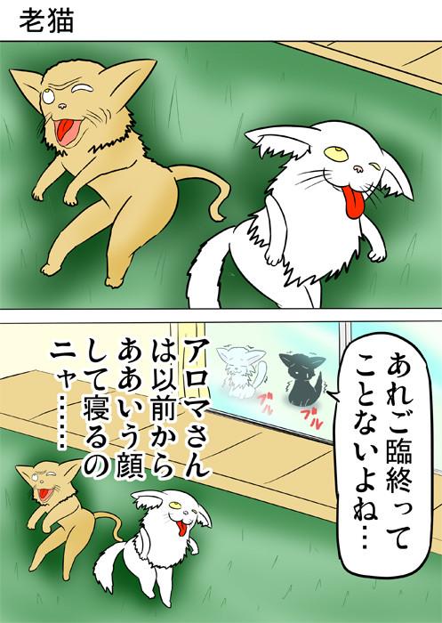 舌を出して倒れている老猫とおっさん猫 ふわもふ猫の日常四コマweb漫画268話1p