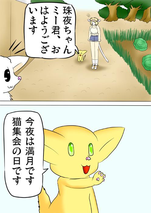 猫集会の連絡をする子猫 ふわもふケモノ家族連載web漫画第三十話4p