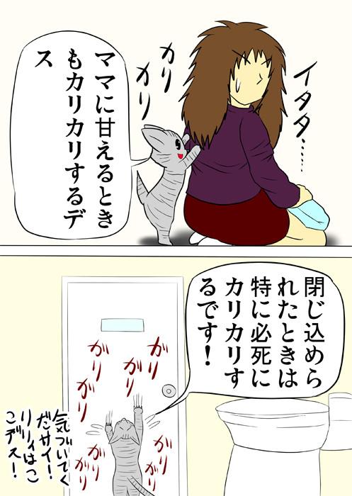 トイレに閉じ込められ、ドアをひっかくアメリカンショートヘア猫 ふわもふ猫の日常四コマweb漫画305話2p