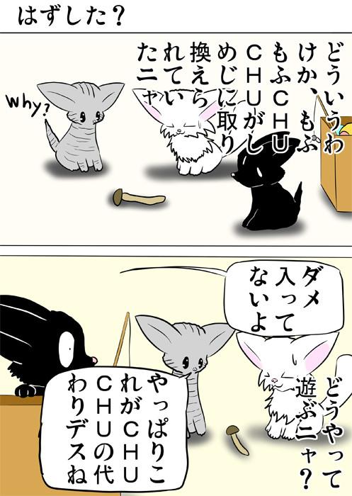 しめじを眺める子猫達 ふわもふ猫の日常四コマweb漫画319話1p