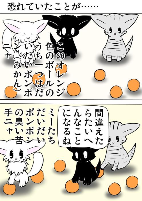 複数のオレンジ色のボールを見下ろす子猫達 ふわもふ猫の日常四コマweb漫画346話1p