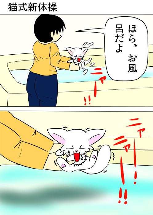 白猫を風呂に入れようとする少年