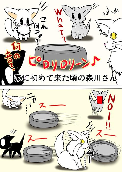 あちこち動き回るロボット掃除機に驚く猫たち ふわもふ猫の日常四コマweb漫画234話2p