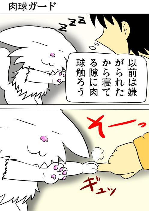 肉球に触れようとしたら指を握られる ふわもふ猫の日常四コマweb漫画288話1p
