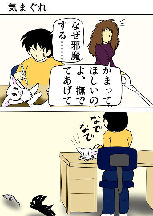 机の上、少年の目の前で寝そべるマンチカン猫 ふわもふ猫の日常四コマweb漫画340話1p