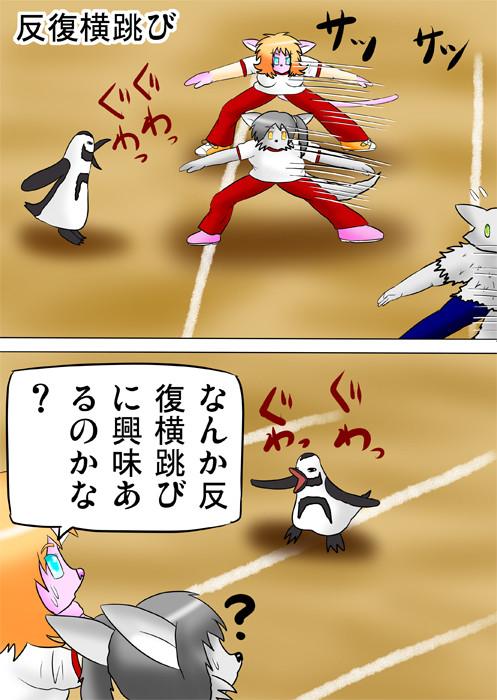 反復横跳びをする猫獣人と狼獣人と犬獣人 それを見ていて鳴くペンギン