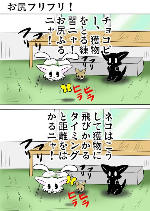 庭でしっぽを振って蝶々を狙う白猫とうずらのヒナ 見守る黒猫 ほのぼの・ふわもふ猫の日常四コマweb漫画352話1p